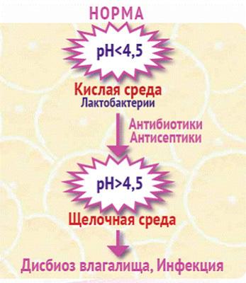 kogda-kislaya-sreda-vo-vlagalishe